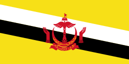 Country Flag Brunei