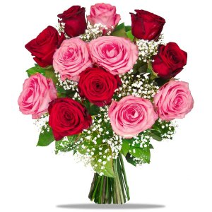 Exclusive Pink & Red Roses