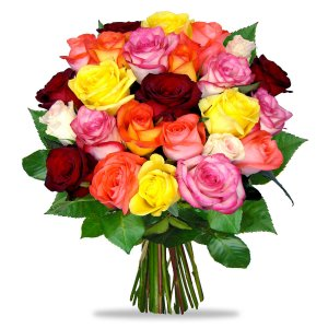 Coloured Mixed Roses