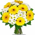 Yellow & White Daisies