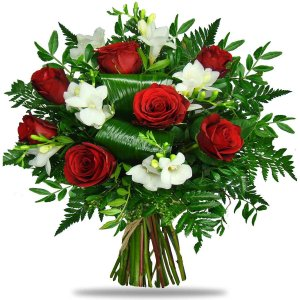 Antigone Red Roses & Freesias