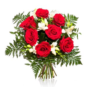 Red Roses & Freesias