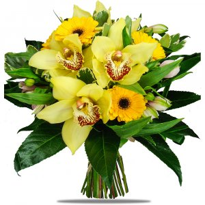 Yellow Orchids & Daisies